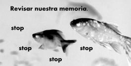 peces-028-copia